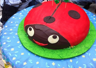 oblikovalska-torta---pikapoka